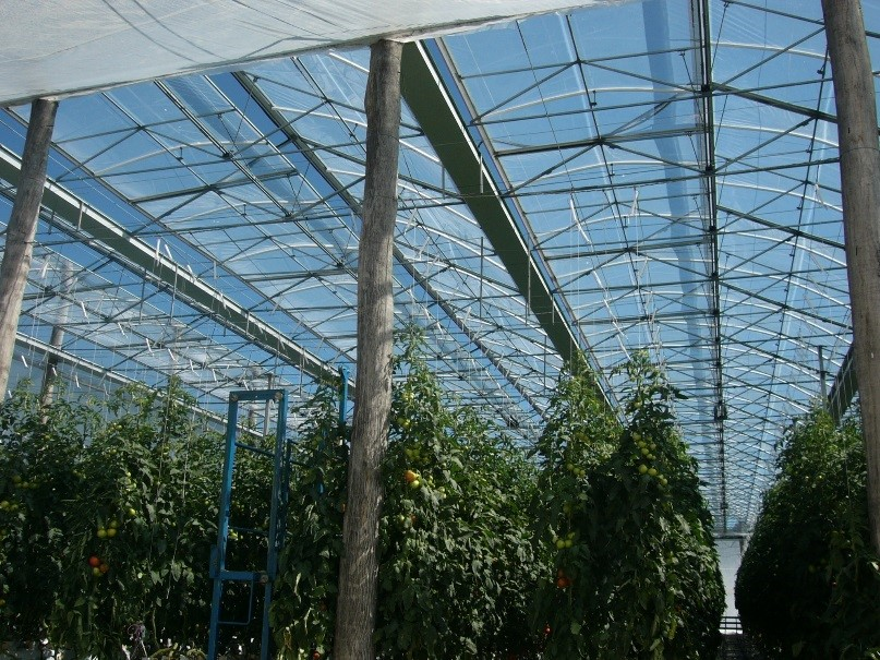 "Agriculture: High durability film ""F-CLEAN™"" for greenhouse"