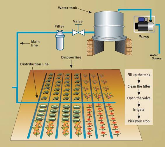 Water Irrigation Schematic on honda design diagram